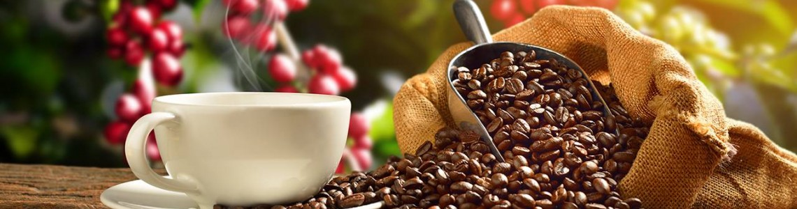 Coffee and its beneficial ingredients!